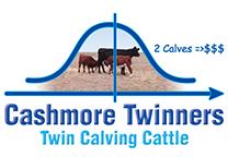 Cashmore Twinners